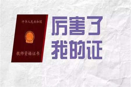 大二 上海小学教师资格证
